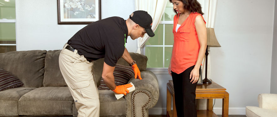 Vallejo, CA carpet upholstery cleaning