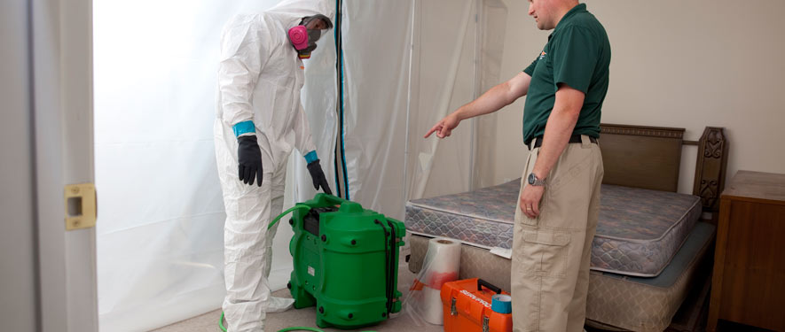Vallejo, CA mold removal process